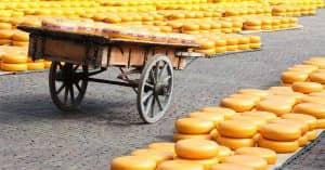 queso-alkmaar