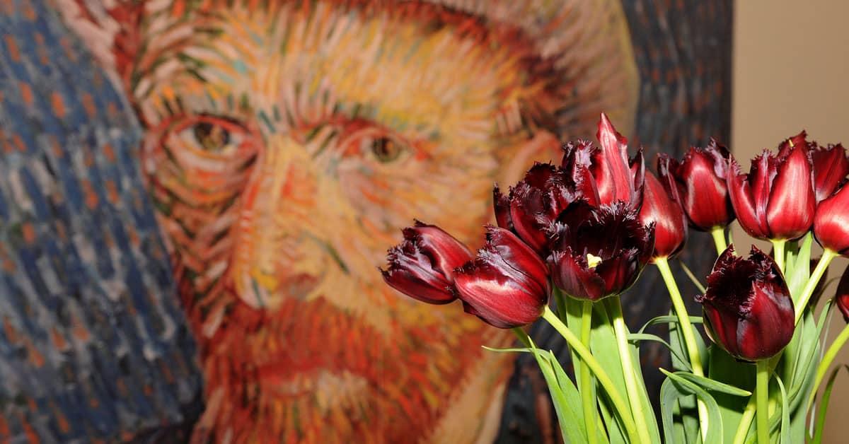 Van Gogh Holanda - Países Bajos