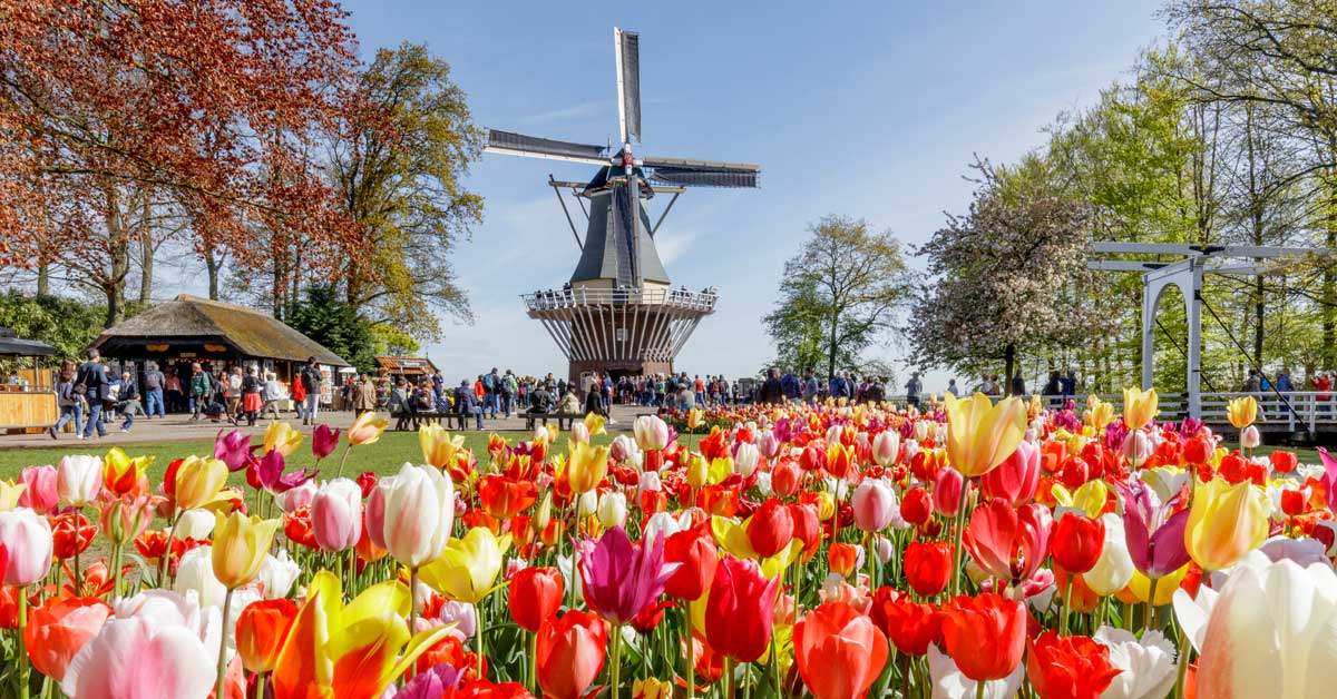 Keukenhof Holanda - Países Bajos
