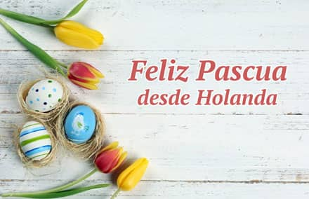 pascua-holanda